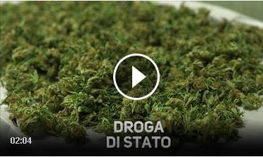 Sapevate che lo Stato Italiano coltiva marijuana?