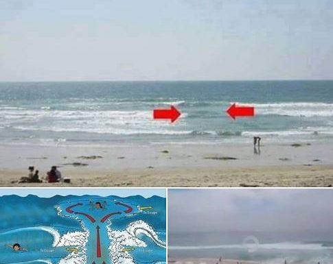 Prestate la massima attenzione quando siete in spiaggia, prima di entrarvi, osservate bene il mare.