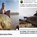 Nucleare. Trovati animali enormi nel sud della Francia.